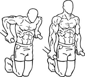 traction musculation pectoraux