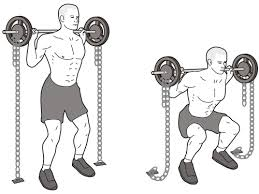 muscler cuisses squats