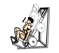 squat avec machine