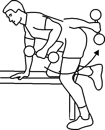 exercice triceps haltères